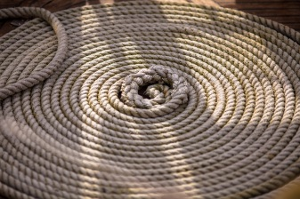 Coiled - Mabry Campbell