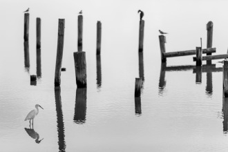 In The Still Of The Day I - Fine Art Photographer - Houston - Mabry Campbell