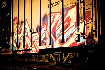 Rail Art - Mabry Campbell