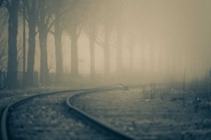 Tracks Through Fog - Mabry Campbell