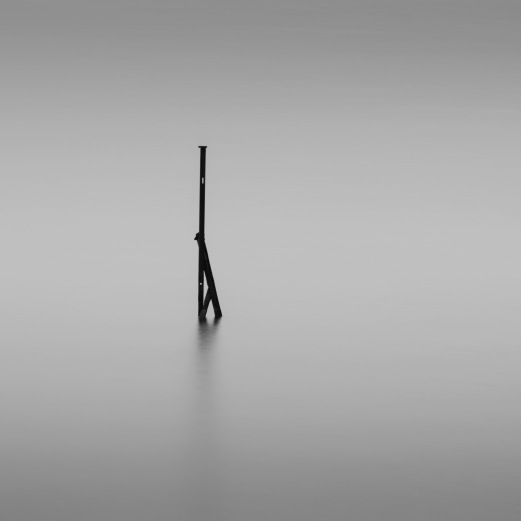 Standing Tall - Fine Art Photography - Houston - Mabry Campbell