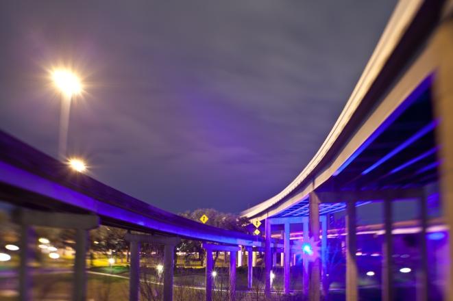 Buffalo-Overpasses-Mabry-Campbell