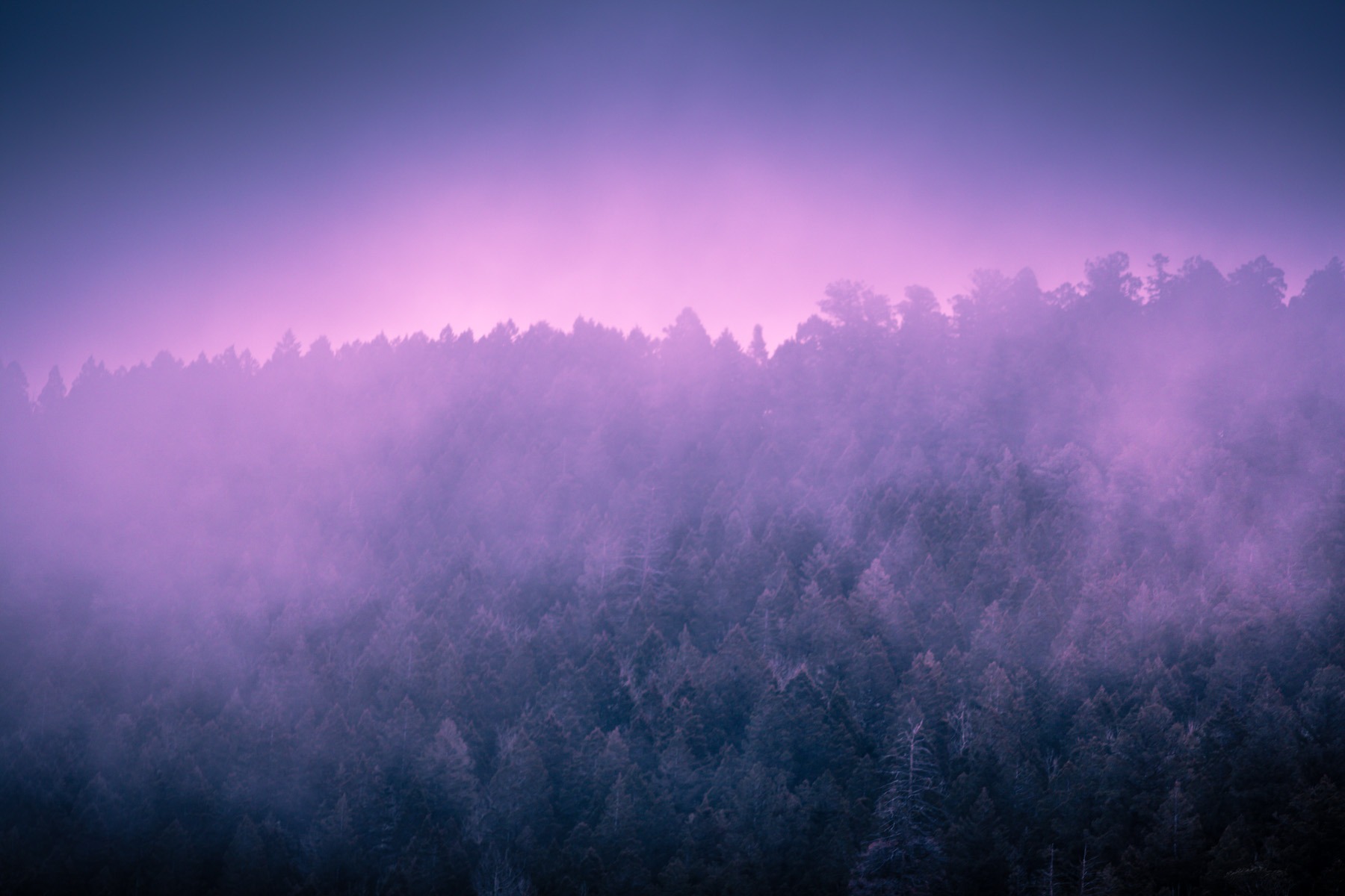 purple mountain fog