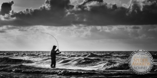 campbell-mabry_The-Fly-Fisherman
