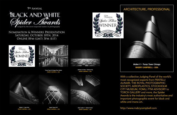 2014-Black-And-White-Spider-Awards-Collage-Mabry-Campbell