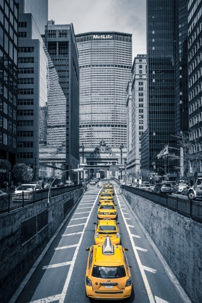 Line Of New York Cabs - Mabry Campbell