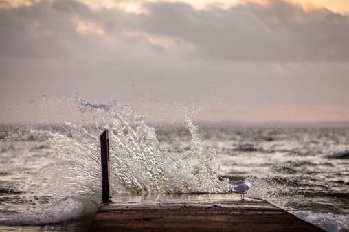 Splash-II-Mabry-Campbell