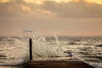 splash-mabry-campbell