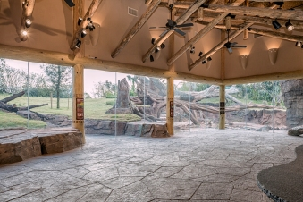 Gorrila-Exhibit-Visitors-Room-At-the-Houston-Zoo-March-2015-Mabry-Campbell