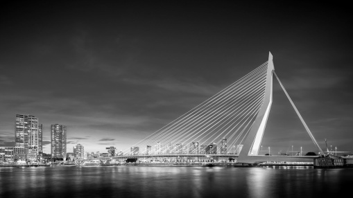 I-Am-Erasmus-Bridge-M-Mabry-Campbell