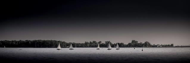 Sailboats-Racing-In-Toronto-Waterfront-Mabry-Campbell