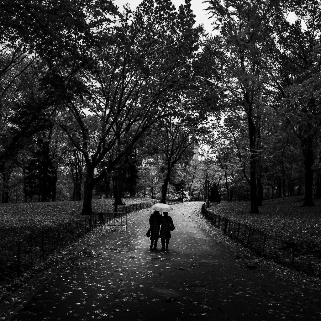 Central-Park-Rain-Mabry-Campbell