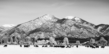 Grazing-At-Pueblo-Peak-Mabry-Campbell