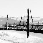 Taos-Pueblo-No.-18-Mabry-Campbell