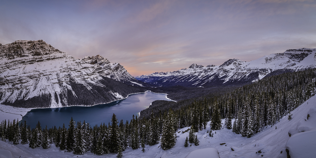 Peyto Lake Sunrise in Banff, Alberta, Canada.