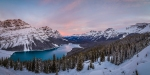 Peyto Lake Sunrise in Banff, Alberta, Canada.